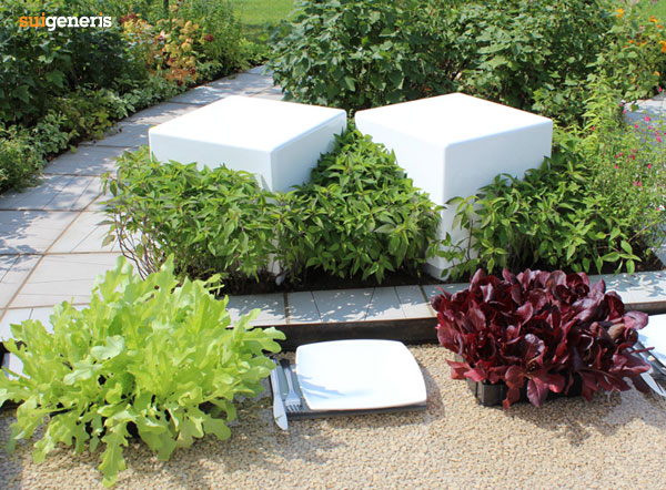 Cube seating features in an edible garden landscape design.