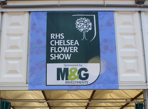 2. RHS Chelsea Flower Show 2013.