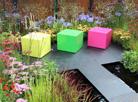 ColourBox garden, RHS Hampton Court Flower Show