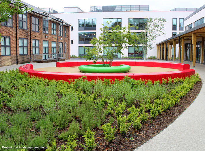 The seating is set within a larger eye-shape lawn and vegetated area creating a dramatic look, especially from elevated areas.