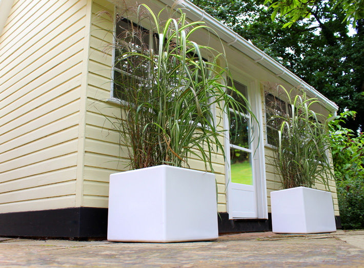 Cube planters are ideal as standalone features or part of a modular display.